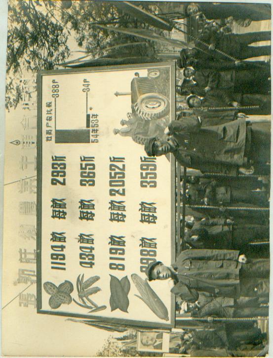 新华社展覽图片[50年代]大跃进亩产万斤粮 宽 25cm长16cm