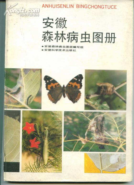 安徽森林病虫图册     卖家包邮