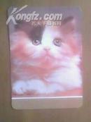 1987年卡片: 猫咪