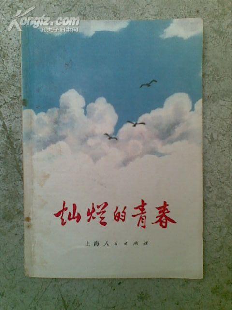 灿烂的青春--上海青年技术革新先进事迹选