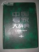 中国专家大辞典6