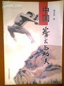 中国拳术与功夫
