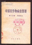 中国农作物病虫图谱 第三分册 旱粮病虫[全彩图]