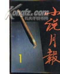 小说月报 (1997年度第1.2.4.5.期)