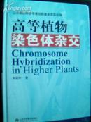 高等植物染色体杂交