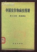 中国农作物病虫图谱 第二分册 麦类病虫[彩图