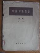 中国动物图谱 鱼类[第一册]