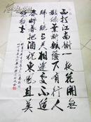 江苏著名书法家吴洒度 行书 139*69厘米