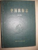 中国植物志(第七卷)