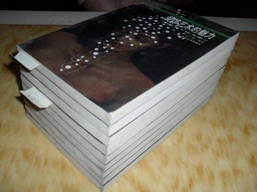视觉艺术传播丛书 装饰艺术的魅力 正版彩印 库存9本 赵天蔚 n1256