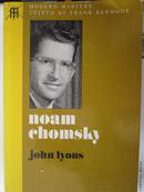 NOAM CHOMSKY by John Lyons