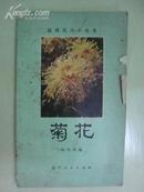 盆栽花卉小丛书——菊花