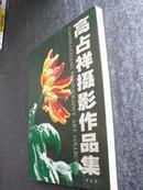 高占祥摄影作品集——菊花卷(16开高级铜版纸深圳雅昌精致印刷)印2000册原价260元现价198元[H1-1]*