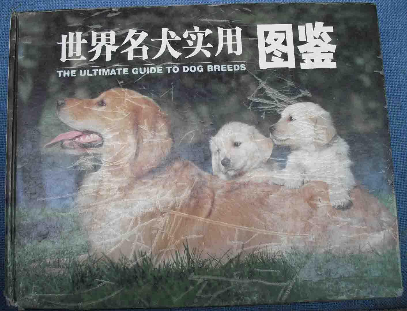 【【世界名犬实用图鉴】】全是狗的图谱
