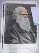 老年画《达尔文》品相如图!
