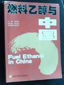 燃料乙醇与中国
