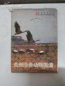 贵州珍贵动物图谱 1988年贵州美术出版社 16开精装