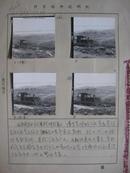 老照片博罗县75年农业照片15张