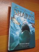 自然观察:鲨鱼 Nature Watch: Sharks (外文原版 大16开 彩印)