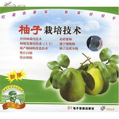 《海南柚子种植技术》
