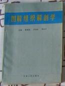 《图解组织解剖学》、一版一印!