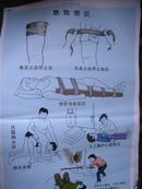 初中生物教学挂图(图70):急救常识(尺寸:75x52厘米)