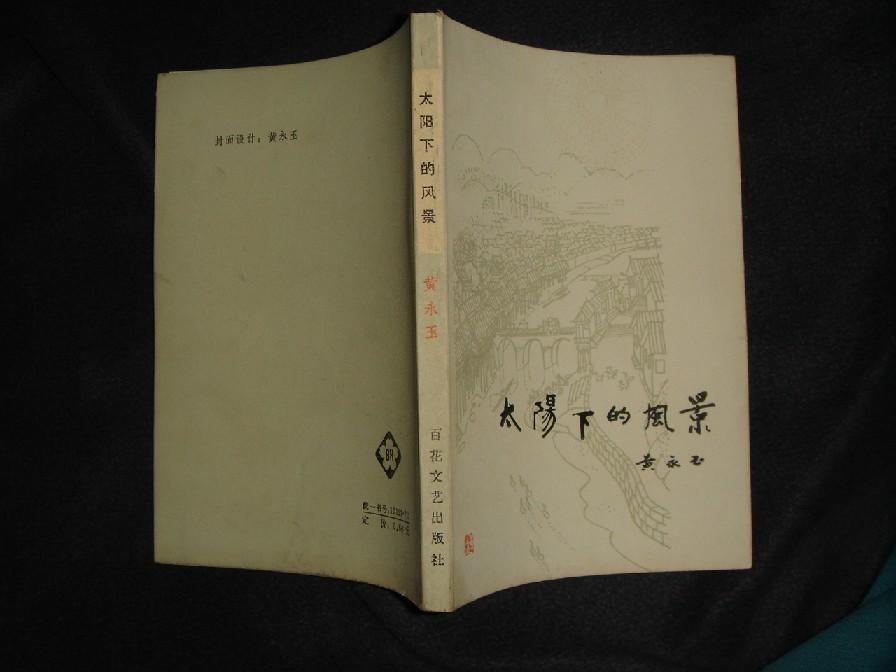太阳下的风景(百花小开本84年1版1印仅印9300册)