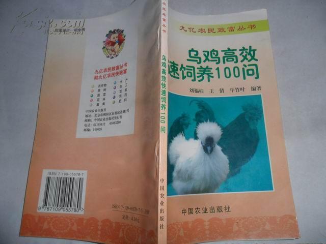 乌鸡高效快速饲养100问