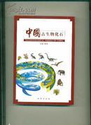 中国古生物化石 张和主编 仅印8000册 地质出版社 铜版纸精印 全是实物彩图 大32开大厚本