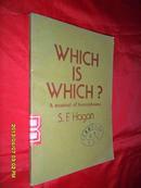 辨别词汇的实用语法 Which is Which? A manual of homophonrs