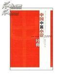 2006中国中篇小说经典