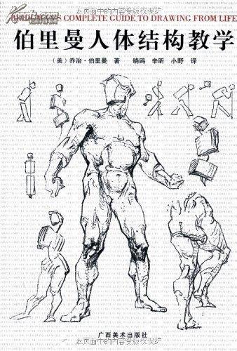 伯里曼人体结构教学