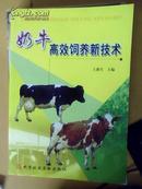 奶牛高效饲养新技术