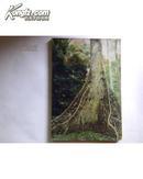 南洋木材一百种