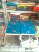 青海省地方志系列丛书-------黄南藏族自治州地方志系列-----特装绸缎面----【河南县志】上下册--------虒人永久珍藏