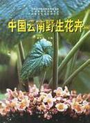 中国云南野生花卉 武全安主编 中国林业出版社