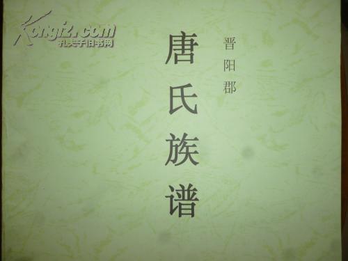 唐氏族谱 晋阳郡(全彩)