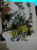潘天寿作品【1978年一版一印人民美术出版社】