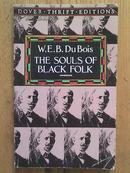 THE SOULS OF BLACK FOLK  [黑人的灵魂]