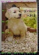 日版收藏-川口晴-犬と私の10の約束狗狗与我的10个约定