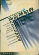 透视网络时代丛书・伸延的世界:网络化及其限制