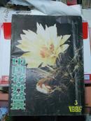 1986年第三期《中国花卉盆景》