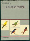 广东鸟类彩色图鉴(16开精装,有彩图50页,方楚雄等绘画,鸟图299幅)