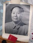 宣传画全品黑白画像毛主席标准像毛泽东宣传画像53x38,近全品