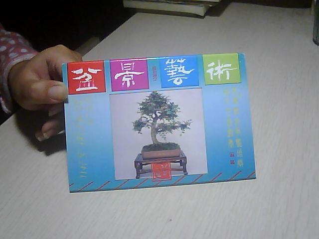 明信片:盆景艺术