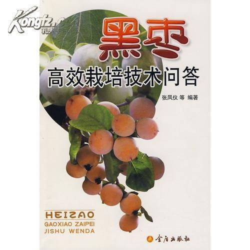 黑枣树在华北地区的物候期表现如何