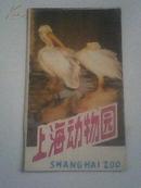 《上海动物园 导游图》