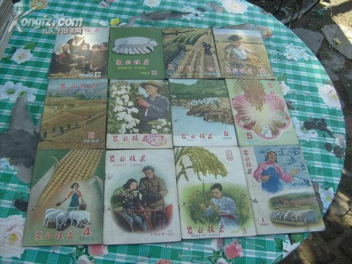 农业技术【1960年1-12期合售】共12本           书品如图免争议