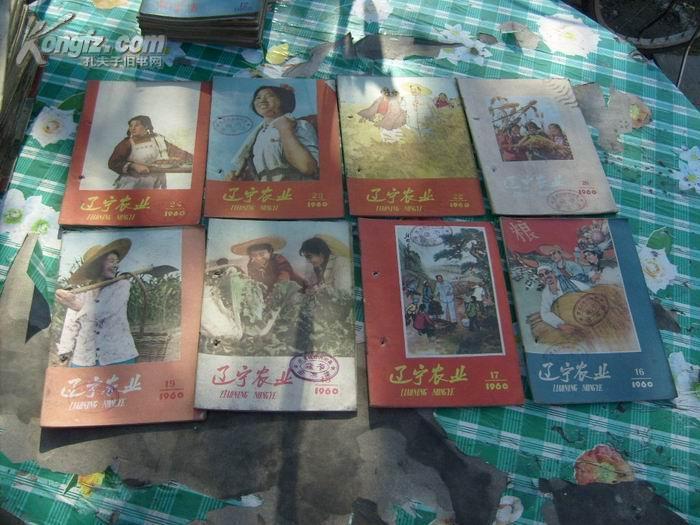 辽宁农业 1960年7.8.9.11.13-20,22--24 共计15本        书品如图免争议