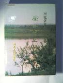 衡水地区水利志 硬精装1版1印
